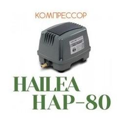 HAILEA HAP-80